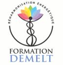 logo-formation-demelt-site.png